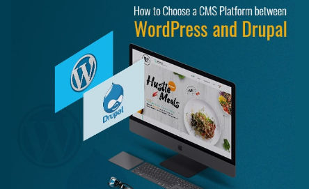 cms-web-development-services-blog